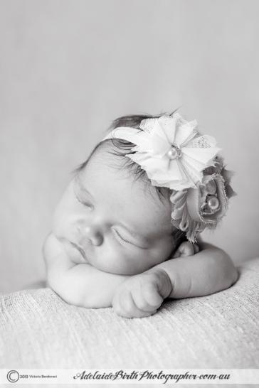 Adelaide Birth Photographer--18