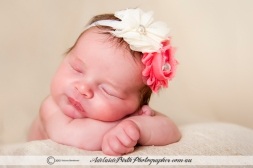 Adelaide Birth Photographer--23