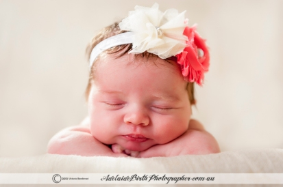 Adelaide Birth Photographer-